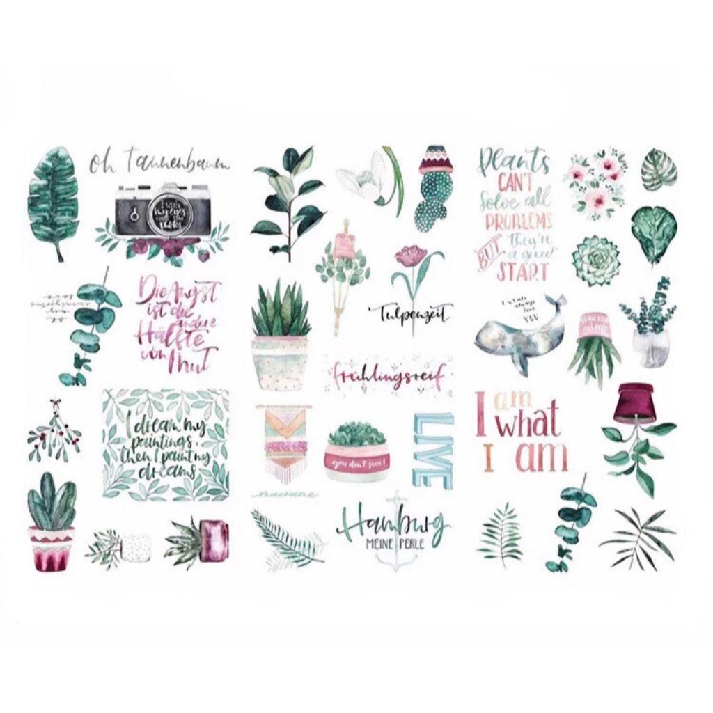 Adesivos Plantas
