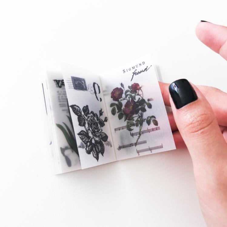 Livrinho Botânica
