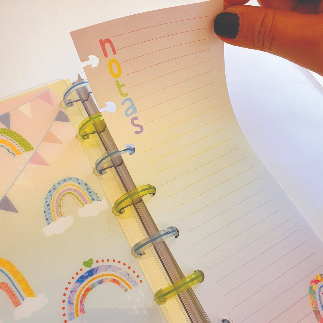 Refil Caderno de Disco - OCTO - Notas Arco-Íris