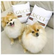 Almofada Gucci personalizado CAPA
