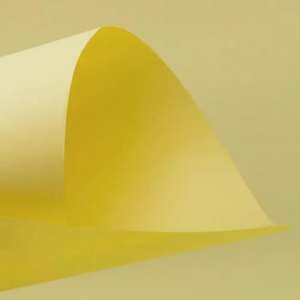 Folha de Cartolina Amarela 50cm X 66cm  - Casa do Roadie