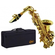 Saxofone Alto Shelter SGFT6430L Laqueado Dourado (Com Estojo)
