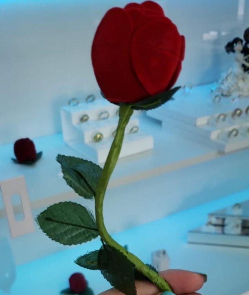 Caixinha Rosa com Caule em Veludo (Anel)