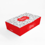 Box Antivazamento - Tamanho G - 12x20x5,6cm - 100 unidades