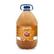 Shampoo Dourado  5lt
