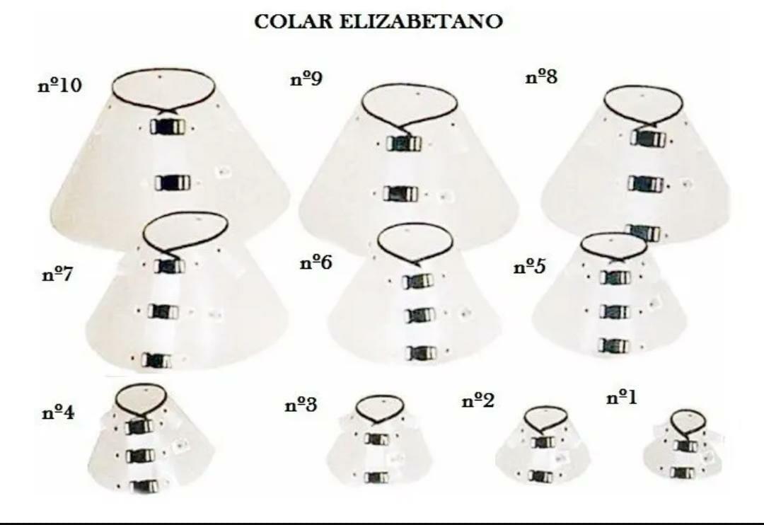Kit Colar Elizabetano