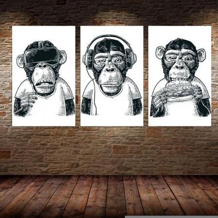 Quadros Decorativos  - 3 Telas - Macacos Engraçados - 70x40cm