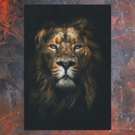 Quadro Decorativo - A Face do Leão - 100x70cm