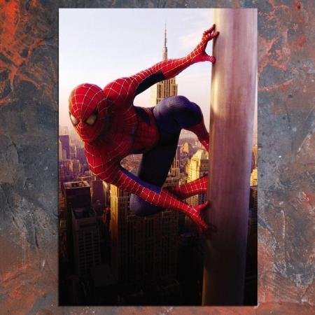 Quadro Decorativo - Homem Aranha - 90x60cm