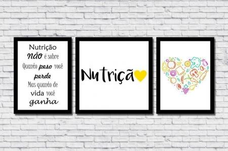 Quadros Decorativos - Profissão - Nutrição