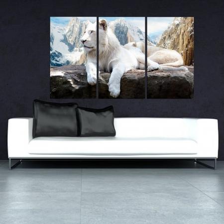 Quadro Leão Branco  na Montanha 120x70cm