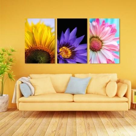 Quadros Decorativos - Flores Coloridas - 3 Telas - 80x45cm