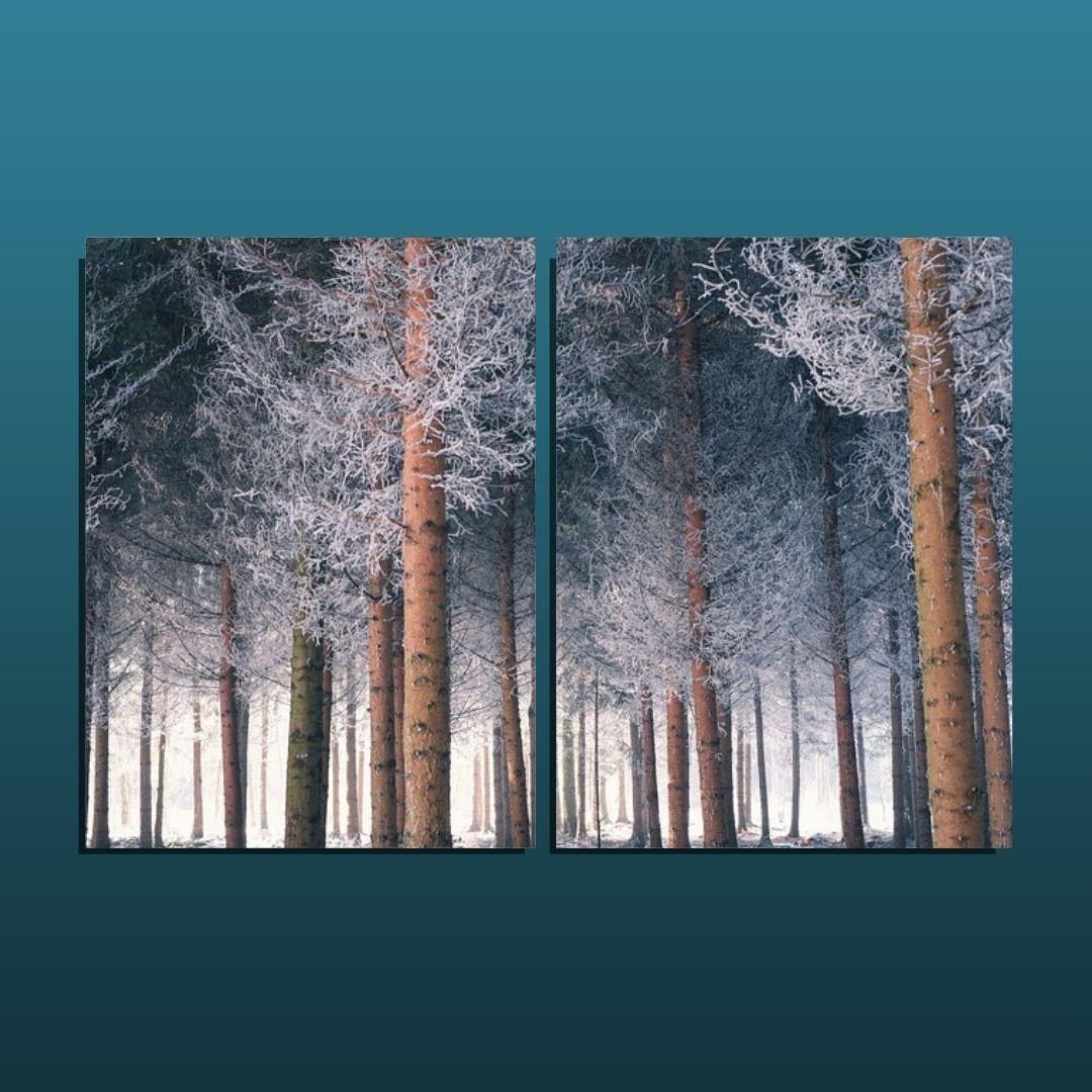 Quadro Para Sala - Arvores no Outono - 2 Telas - 120x80cm.