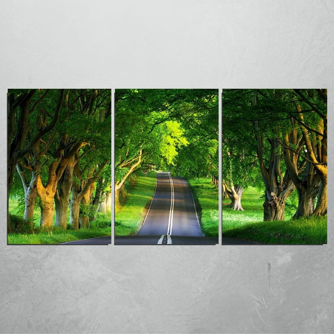 Quadro Decorativo - Caminho Arborizado - 3 Telas - 120x60cm