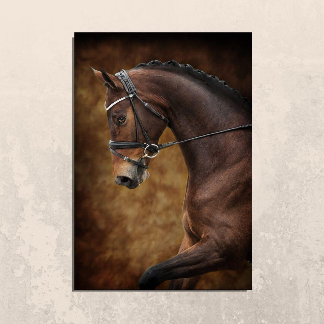 Quadro Decorativo - Cavalo Marrom - 110x70cm