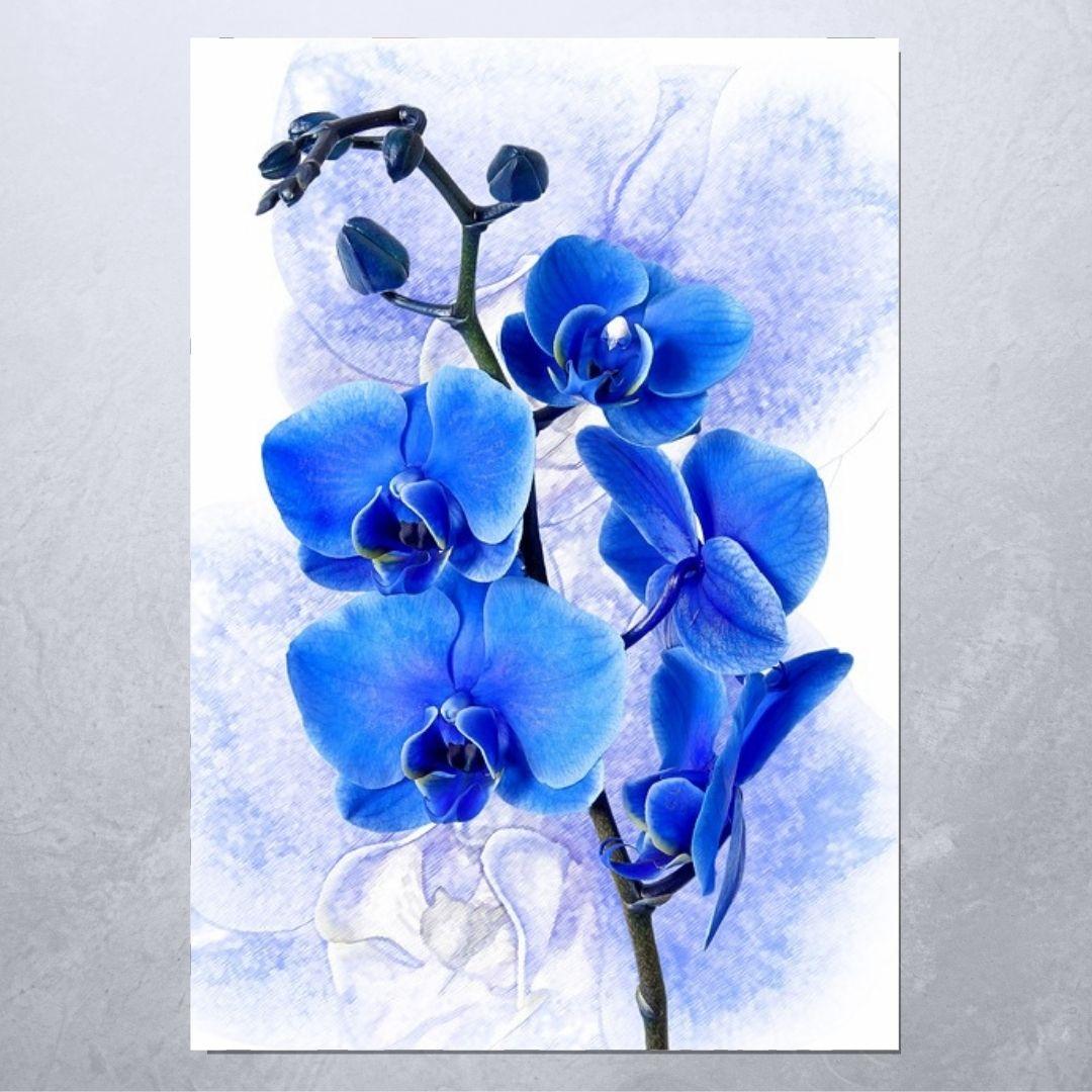 Quadro Decorativo - Orquidea Azul-100x70cm
