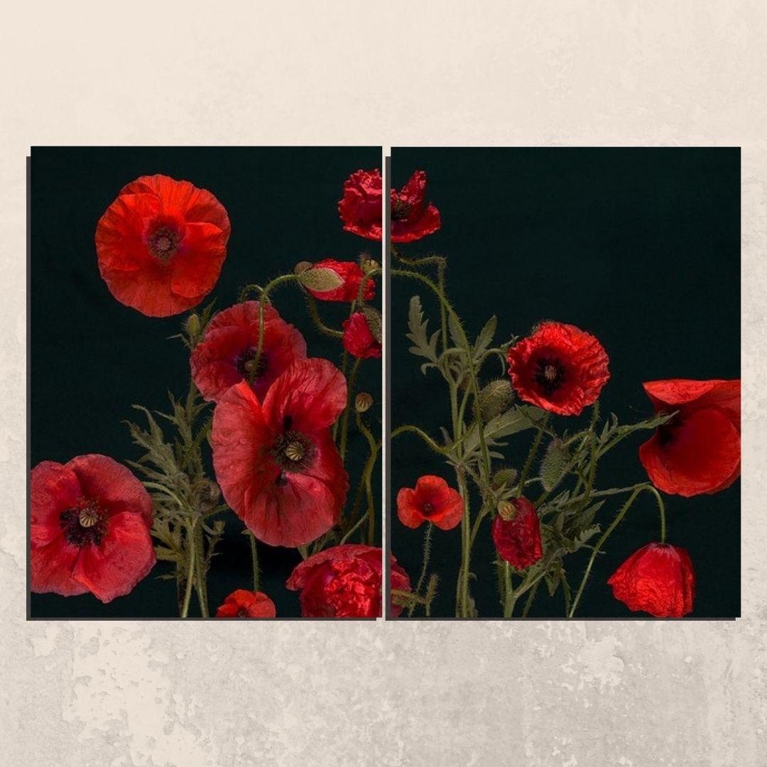 Quadro Decorativo Papoulas Vermelhas 2 Telas 120x80cm