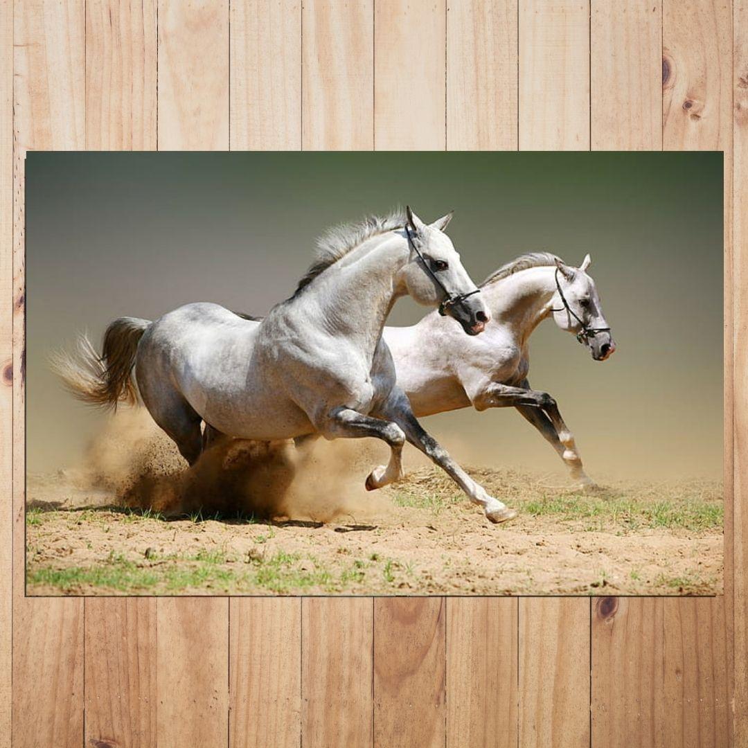Quadro Para Sala - Cavalos Galopando - 110x70 cm