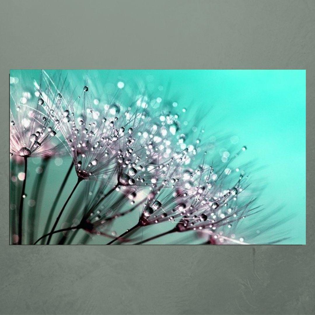 Quadro Decorativo Para Sala  -Dente de Leão Fundo Azul - 110x65cm
