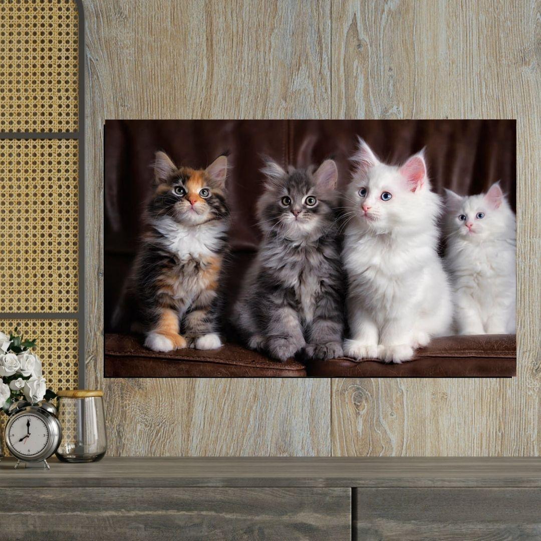 Quadro Decorativo  Para Sala - Quatro Gatos - 90x55cm