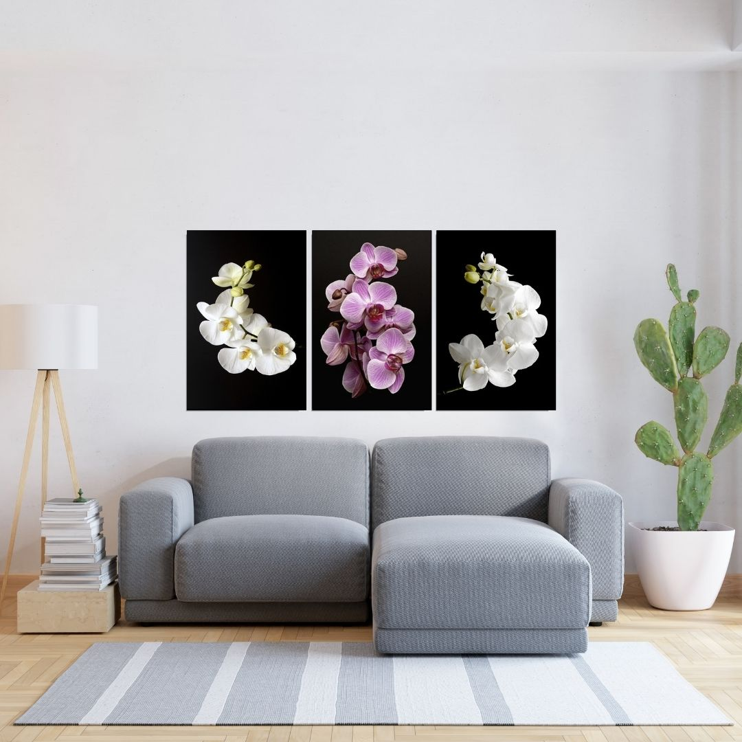 Quadro Decorativo 3 Telas - Orquídeas - 40x60