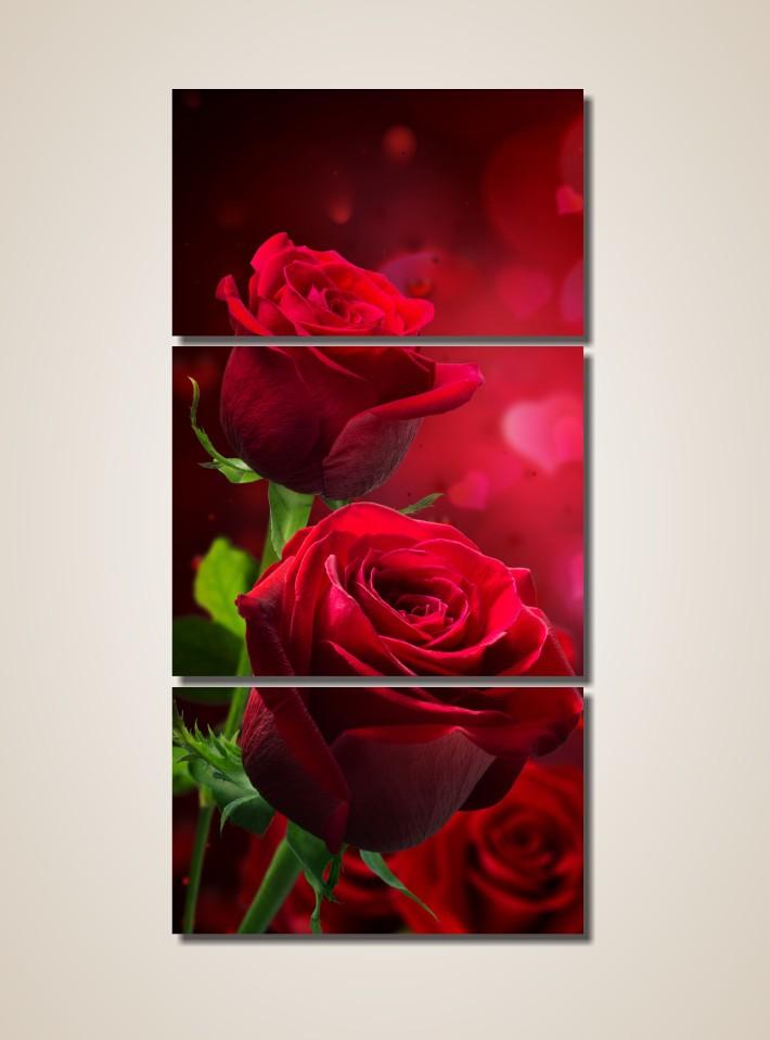 Quadros Decorativos - Rosas Vermelhas - 3 Peças - 200x100 cm