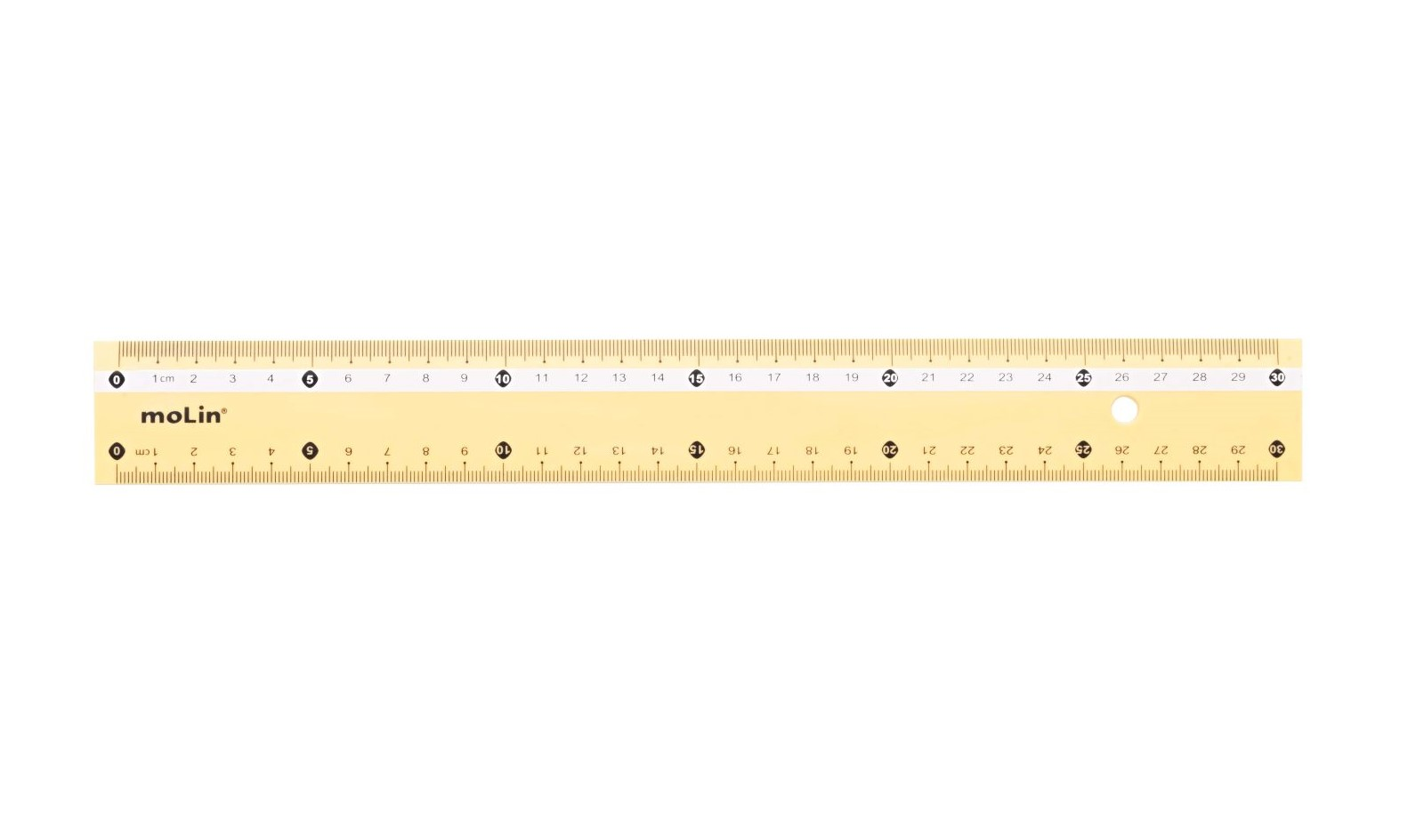 Régua Pastel 30cm Molin