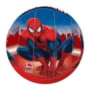 Bola Eva Spider Man 377 - Lider