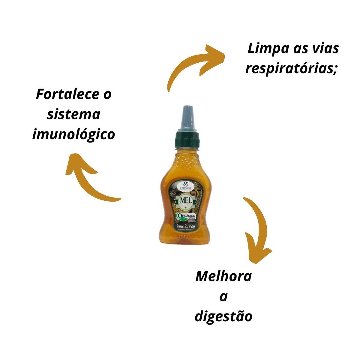 mel orgânico 250g - ApisVida