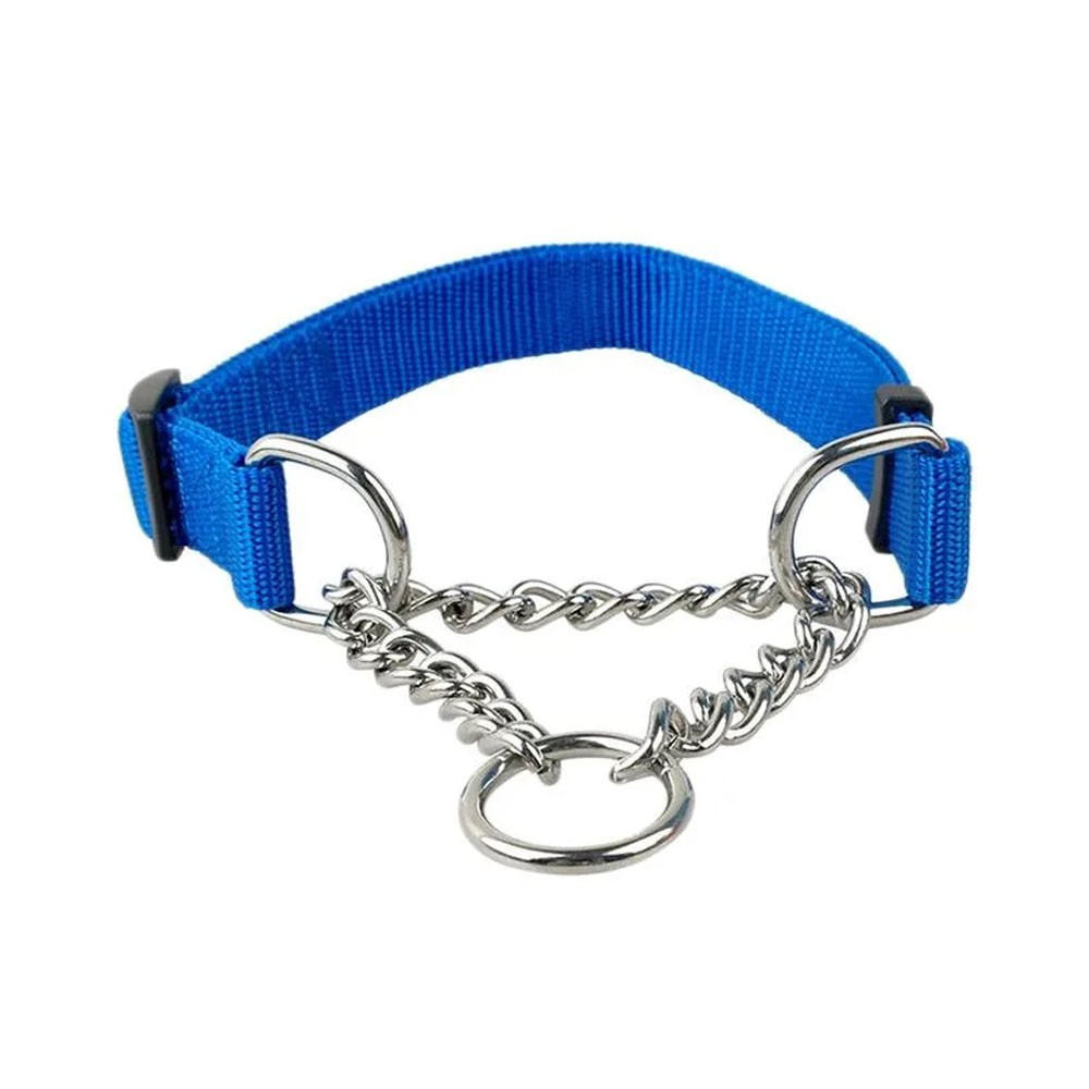 Kit Coleira Corrente Metal Cachorro Caes Guia Semi Enforcador Passeio Pet Adestramento