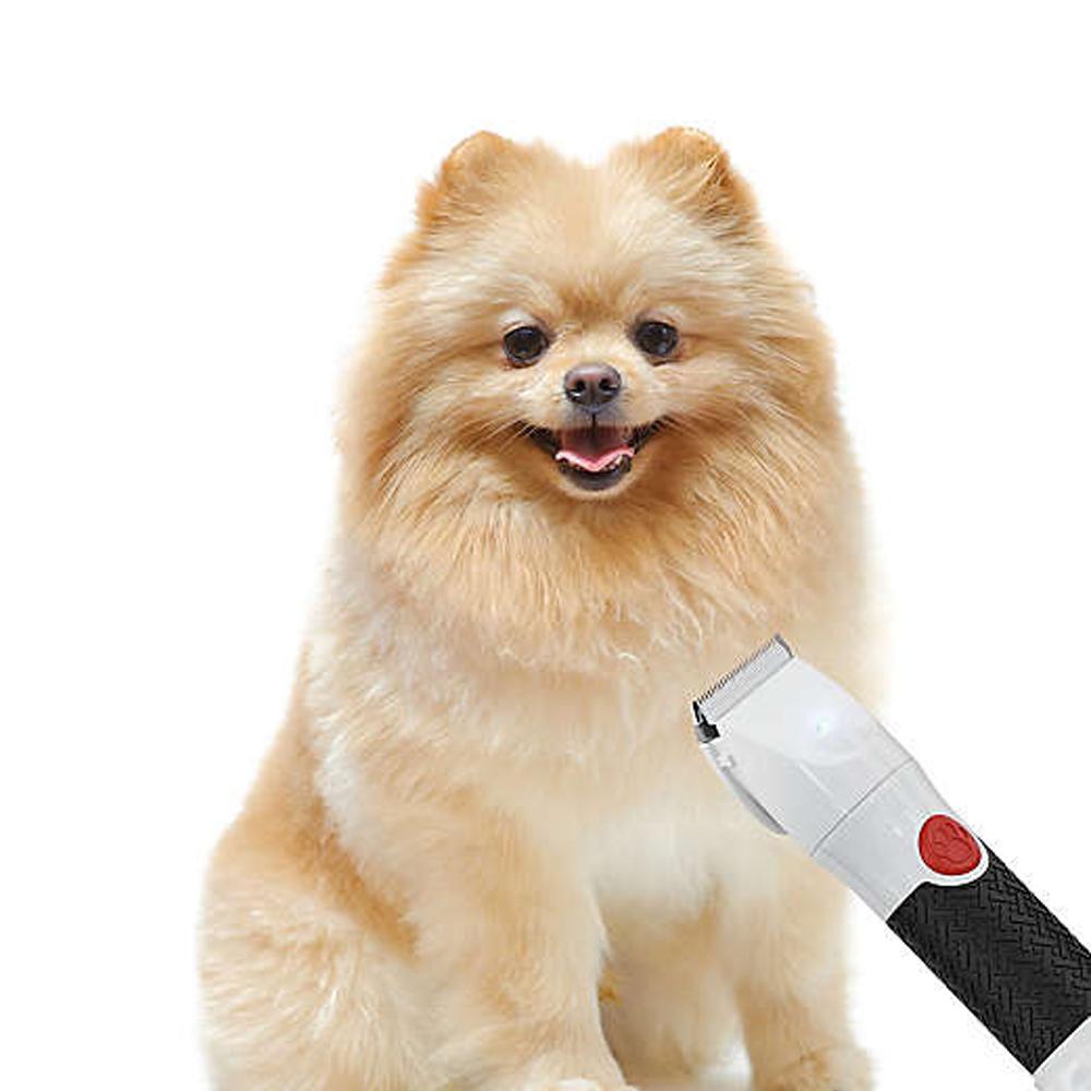 Maquina Tosa Cachorro Gato Pelo Pet LED USB 4 Pentes Sem Fio Silencioso