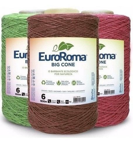 Kit 5 Barbante Euroroma 1.8kg Colorido N°6 Cores Variadas