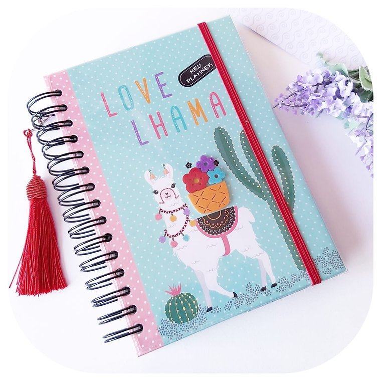 Planner Anual - Lhama