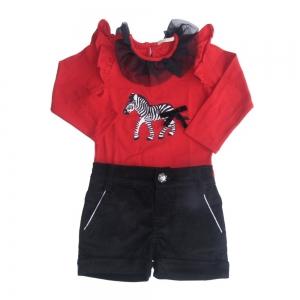 Conjunto Blusa com Shorts de Veludo