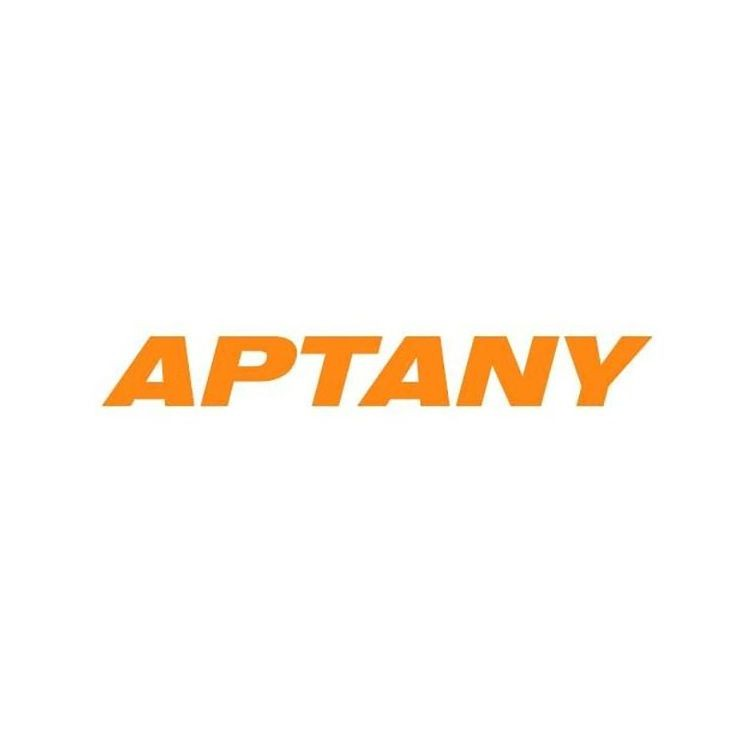 Pneu Aptany Aro 20 275/55R20 RA301 117H