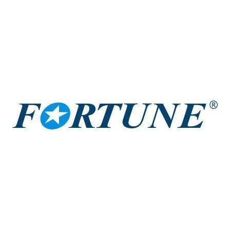 Pneu Fortune Aro 18 215/55R18 FSR-303 99V