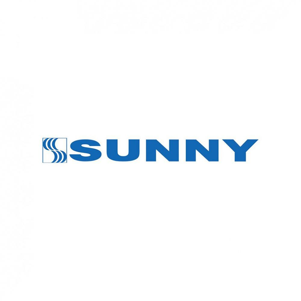 Pneu Sunny Aro 22 285/35R22 SN-3870 106V XL