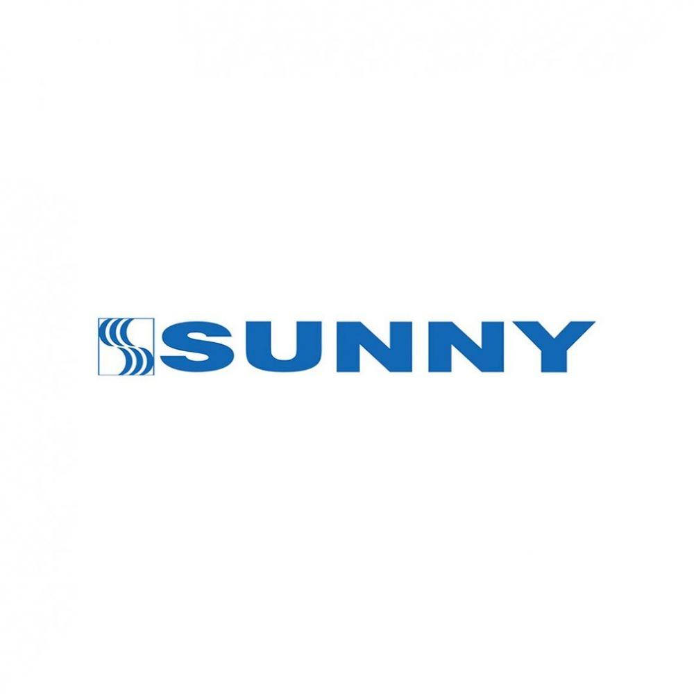 Pneu Sunny Aro 22 305/45R22 SN-3870 118V