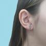 Brinco Armazem RR Bijoux Ear Hook cristais prata