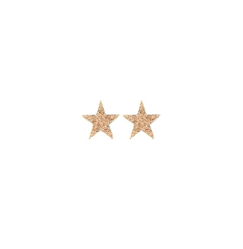 Brinco Armazem RR Bijoux estrela cristais cravejados