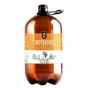 Growler American Pale Ale (APA) 2 litros