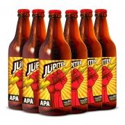 Pack Júpiter APA 06 Garrafas 600 ml (CADA GARRAFA SAI R$20,00)