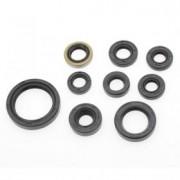 Kit Retentor de Motor BR Parts CRF 250 04/09 + CRFX 250 04/09