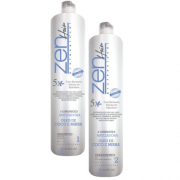 Zen Hair Plástica Capilar Matizadora 4D 2x1L-R