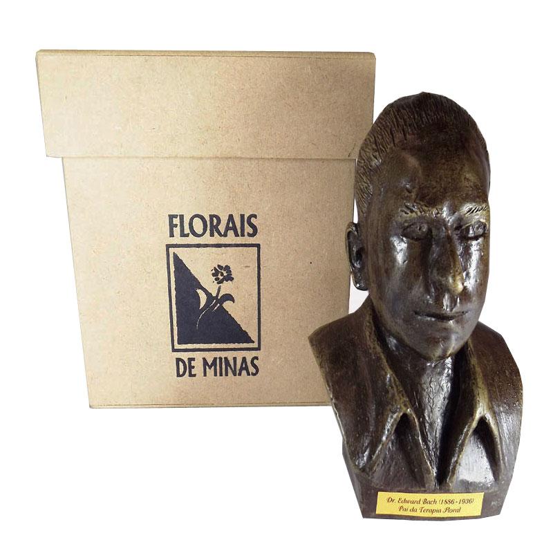 Busto Dr. Edward Bach - Ferro