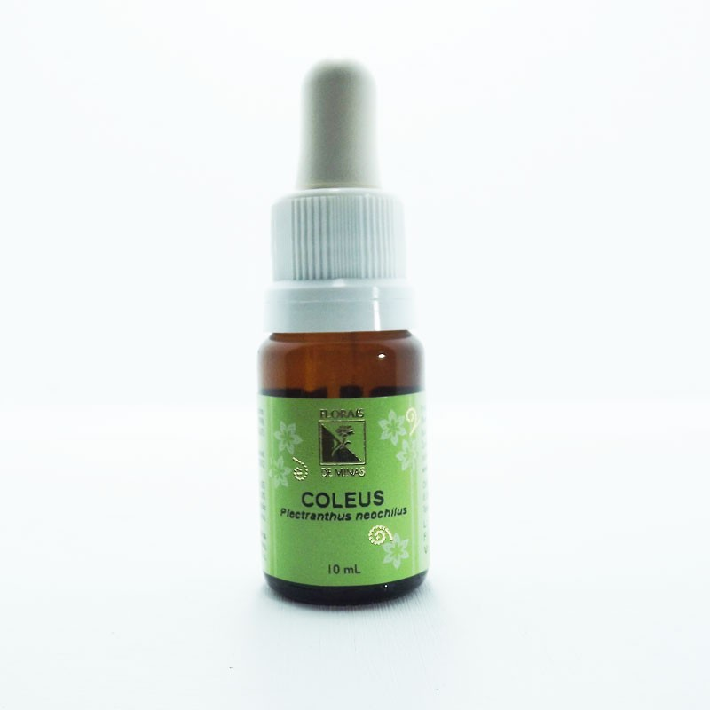 Coleus - Volume: 10 mL