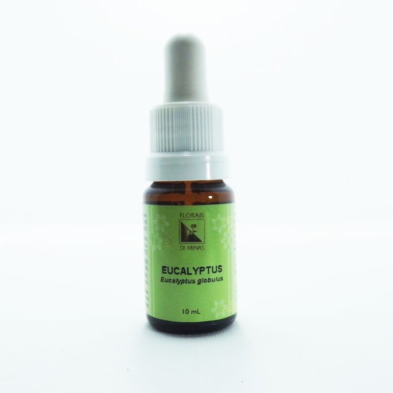 Eucalyptus - Volume: 10 mL