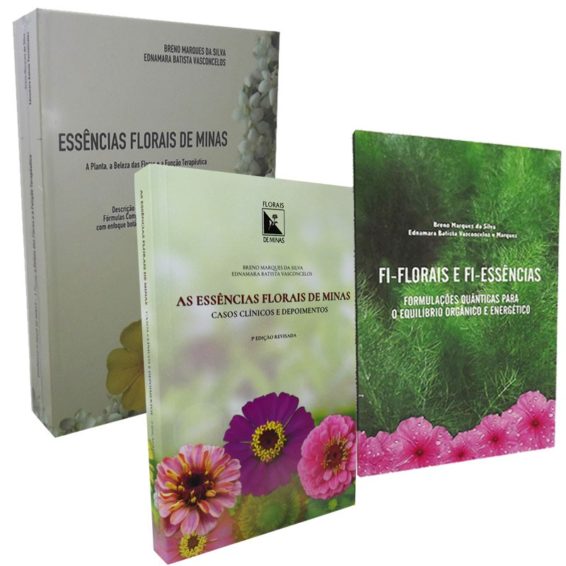 Kit Literatura Fundamental 2
