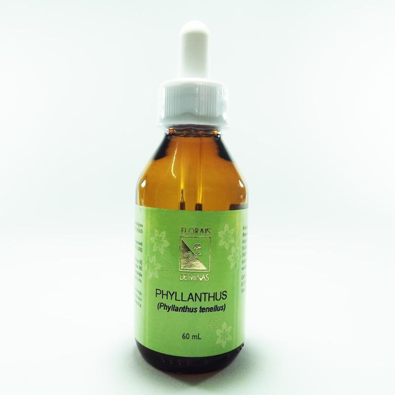Phyllanthus - Volume: 60 mL