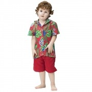 Fantasia de Havaiano Kaleo infantil camisa e bermuda